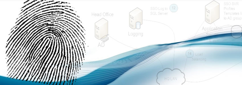 Biometric application security